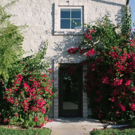 Red bougainvillea vines growing over a doorway at Calcareous Vineyard Winery in Paso Robles